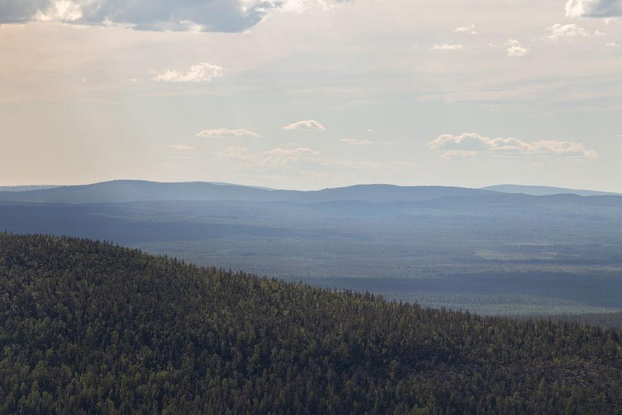 Lapin metsistöä korkealta mäen päältä katsottuna