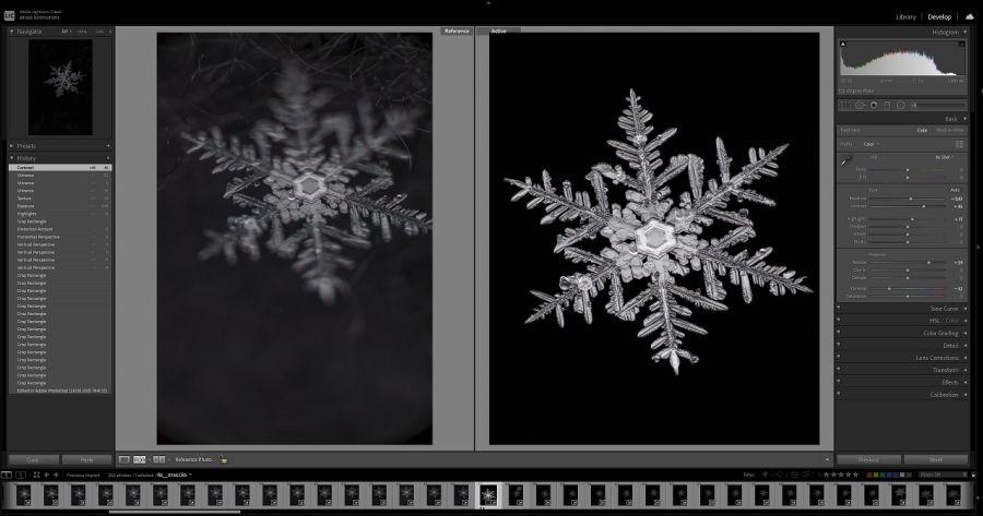 Ennen ja jälkeen -kuva kuvankäsittelystä. Ennen kuva on vain osittain tarkka, jälkeen kuva on kaikkialta tarkka ja täysin musta taustaväriltään.