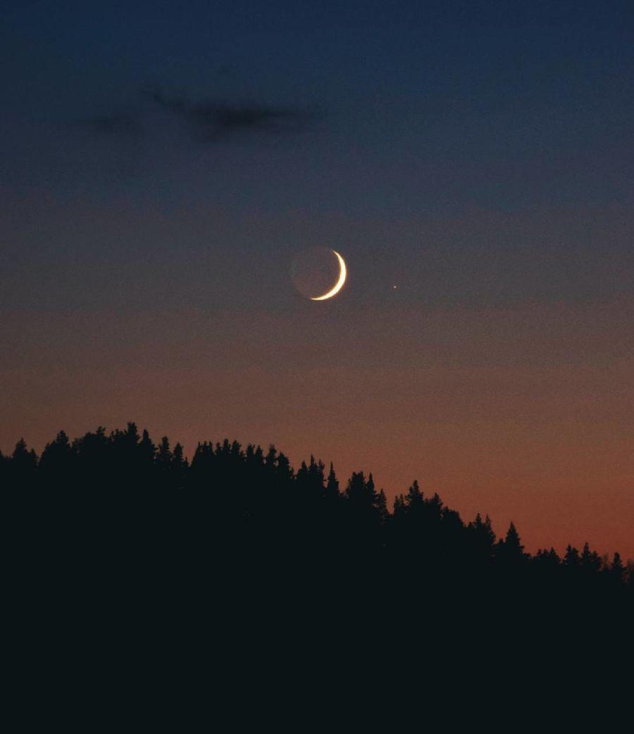 Kuu ja venus metsän yllä yötaivaalla