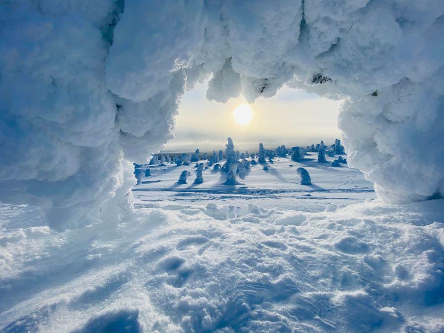 Näkymä puun oksien läpi lumiseen Lappiin