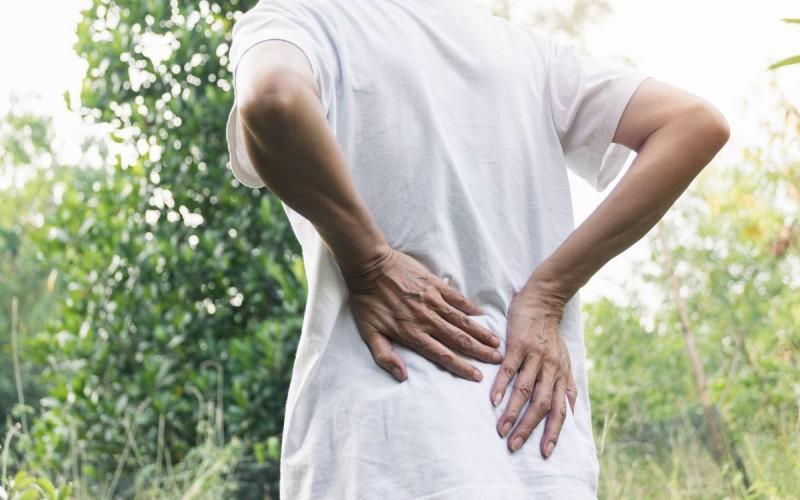 Rückenschmerzen - Ursachen, Verlauf, Diagnose & Behandlung..