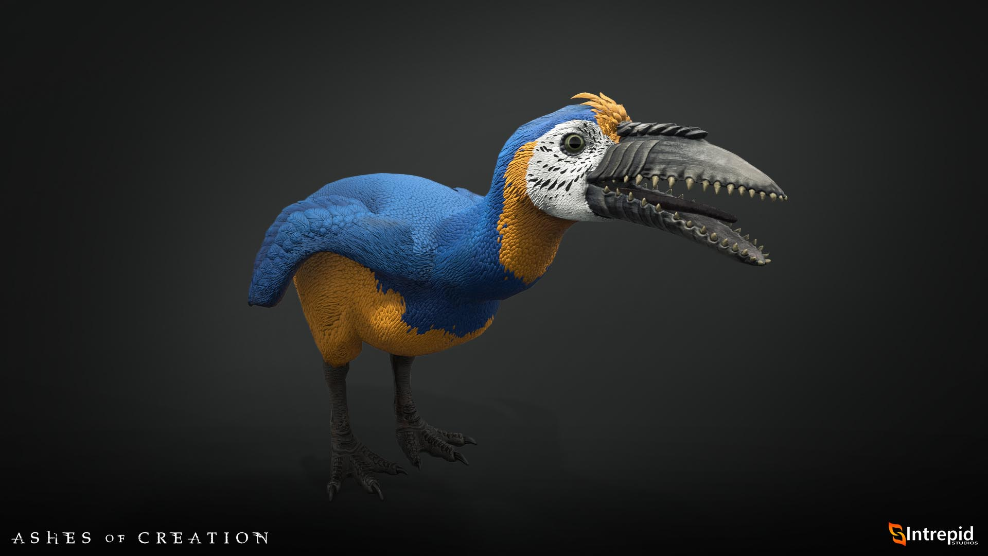 fellbeak macaw production model 2