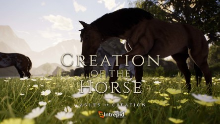 2019_08_09_Horses_Thumbnail_JPG.jpg?h=250