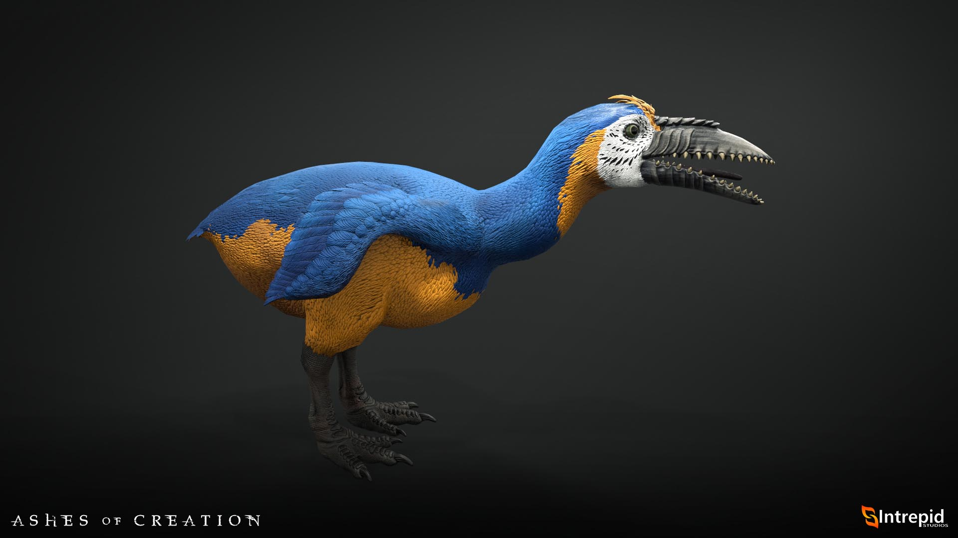 fellbeak macaw production model 1