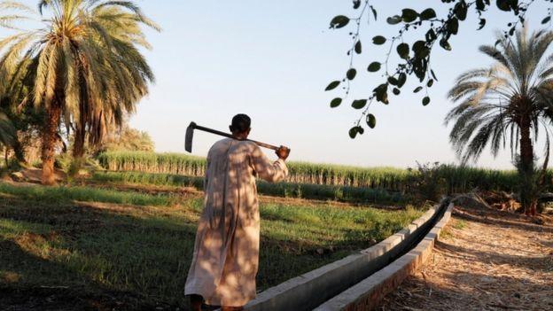 أسماء قرى في مصر: لماذا يخجل البعض من ذكر اسم قريته؟
