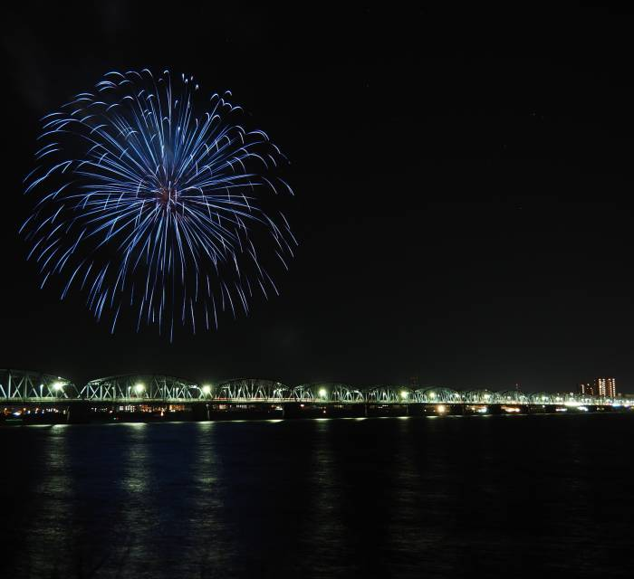 Yoshinogawa Fireworks Display 02