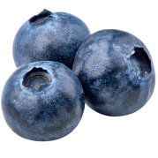 Three plump blueberries on a transparent background