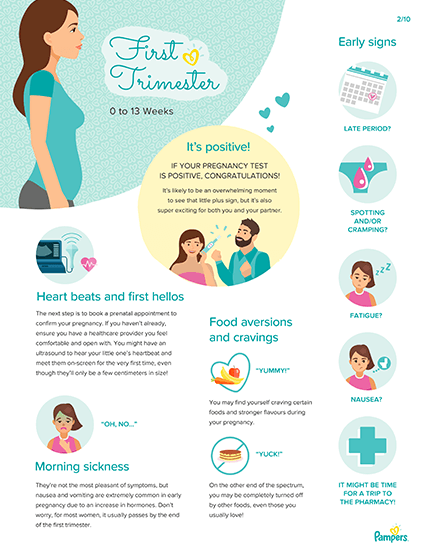 Pregnancy Milestones