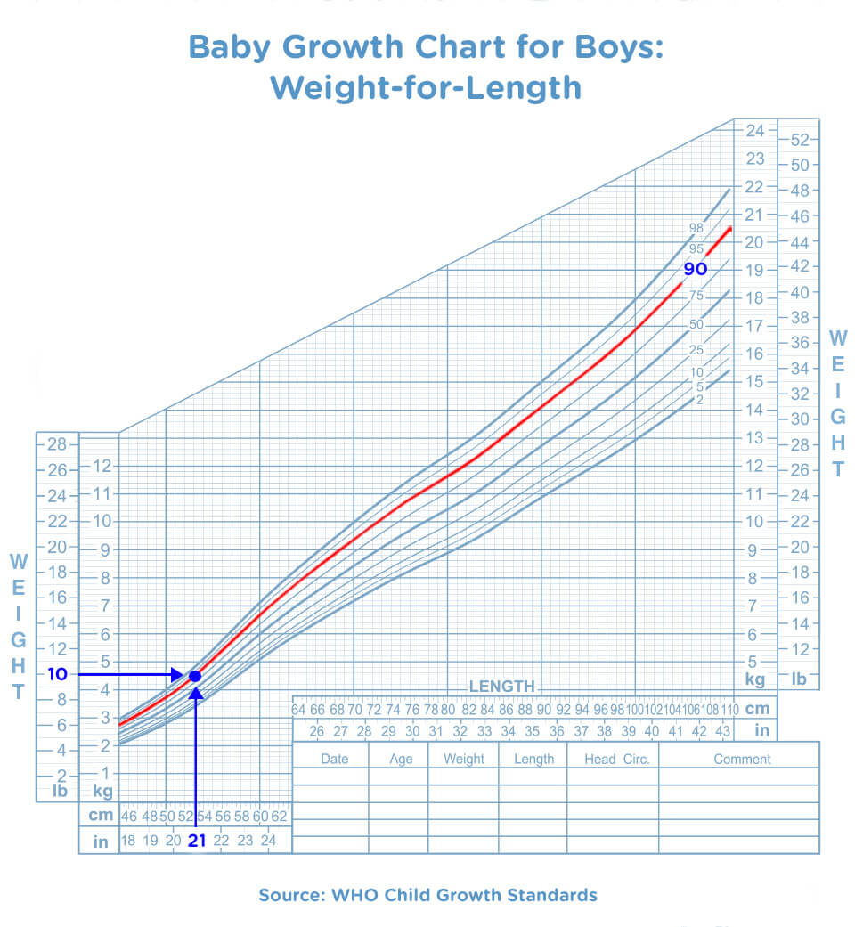 Baby Growth Chart The First 20 Months   Pampers.com