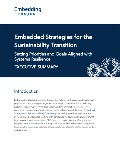 Embedded Strategies for the Sustainability Transition: Executive Summary cover