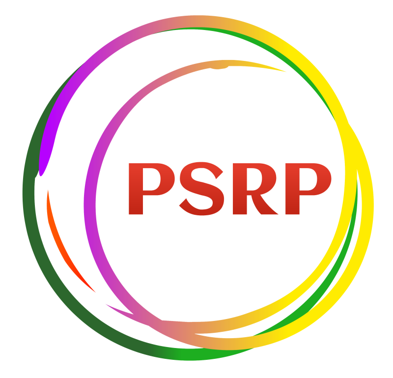 Political Settlements Research Programme (PSRP)