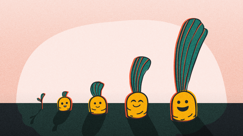 4 cartoon carrots in a line that are sticking out of the soil with a pink background