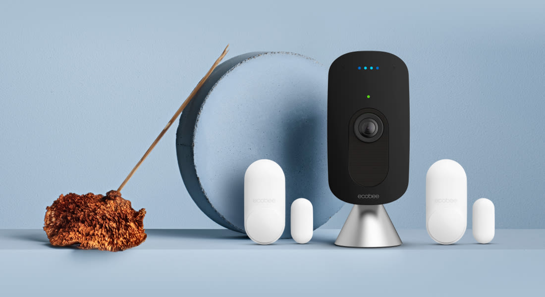 ecobee SmartCamera and 2 SmartSensors for doors & windows.