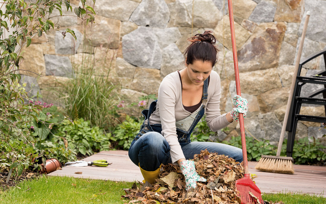 A woman rakes leaves in her yard.