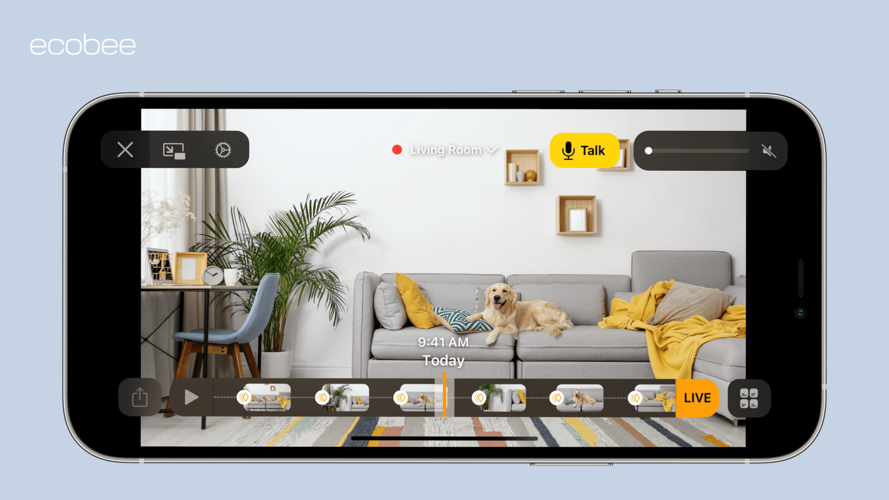 iPhone screen with dog for HomeKit Secure Video