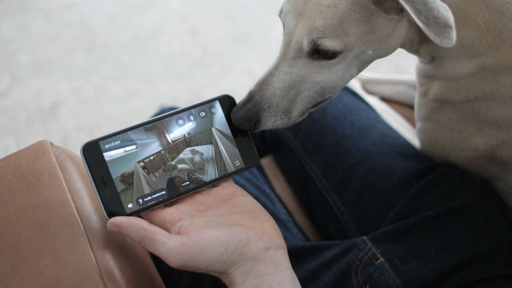 A person holds a phone showing a view from a baby monitor into a nursery. There is also a dog.