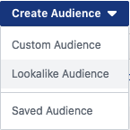 Create Audience, Lookalike Audience