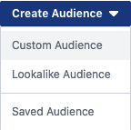 Create Audience, Custom Audience