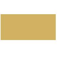 Tigerlily's logo