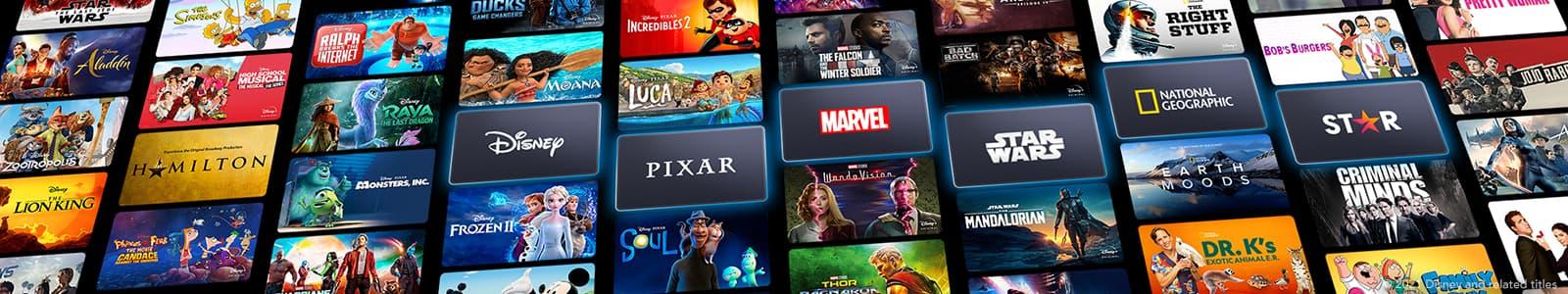DisneyPlus's banner