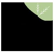 Boody's logo