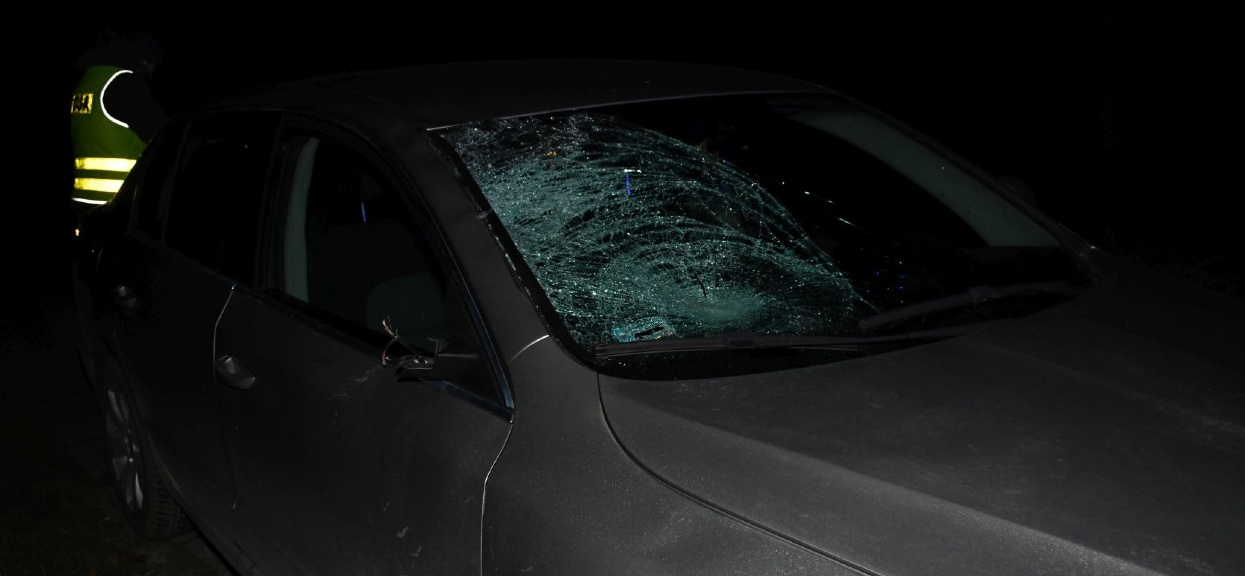Zatrzymano kierowcę podejrzewanego o spowodowanie wypadku w Młodyninie.