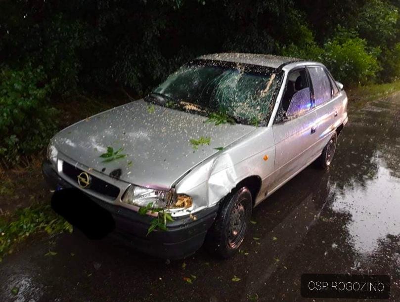 Uszkodzenia auta, na które spadła gałąź