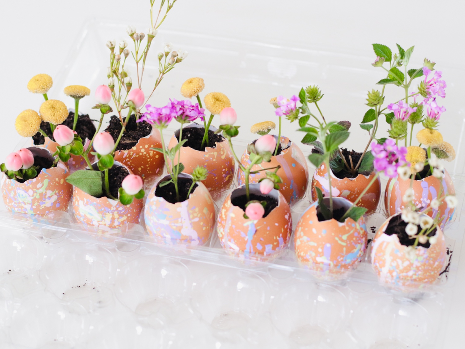speckled-egg-planters-web