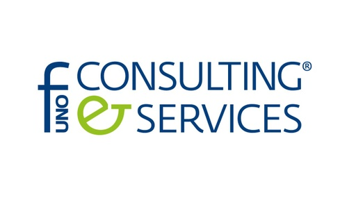 [Company Logo] F1 Consulting and Services