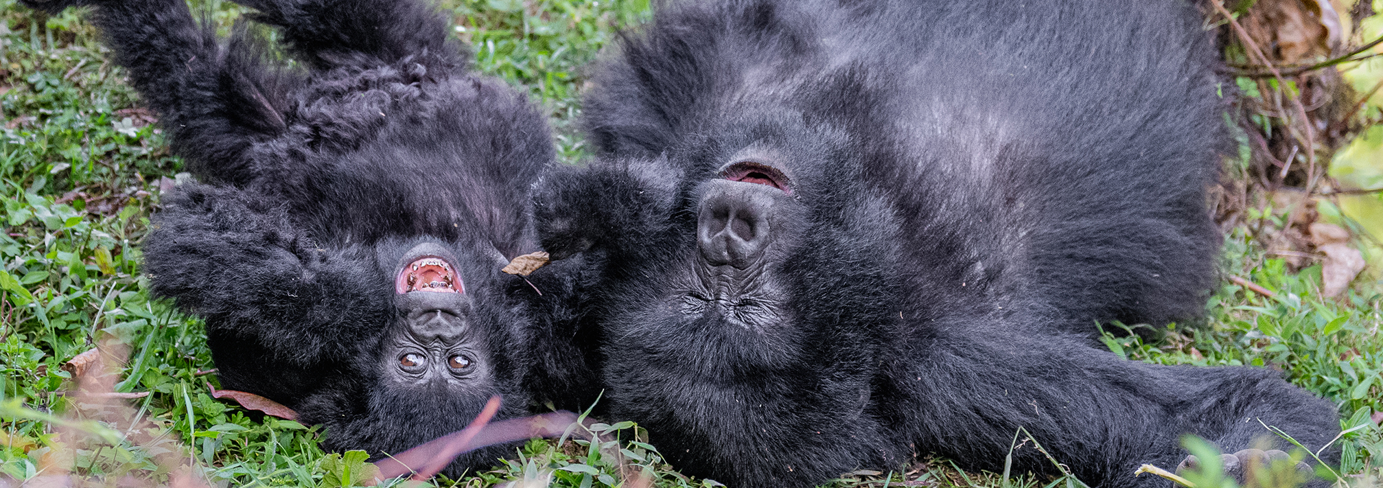 African Safari Family Adventure 2021 33