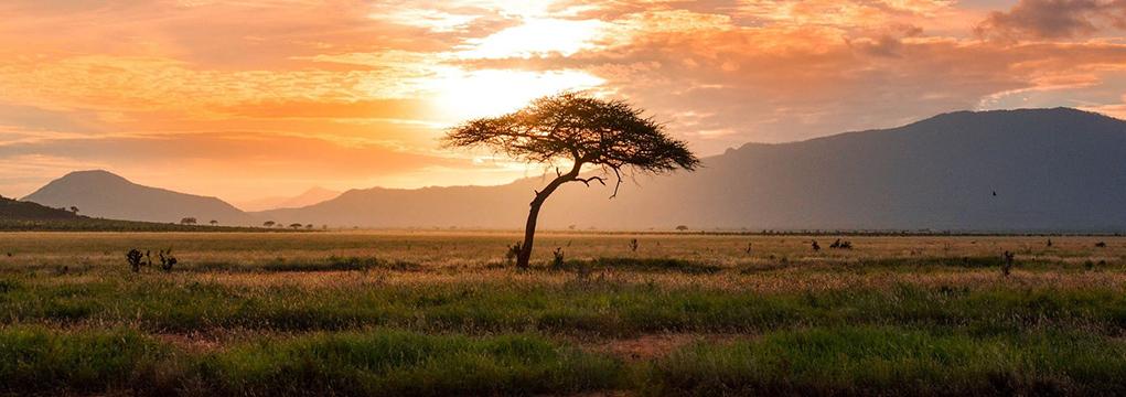 African Safari Family Adventure 2021 15