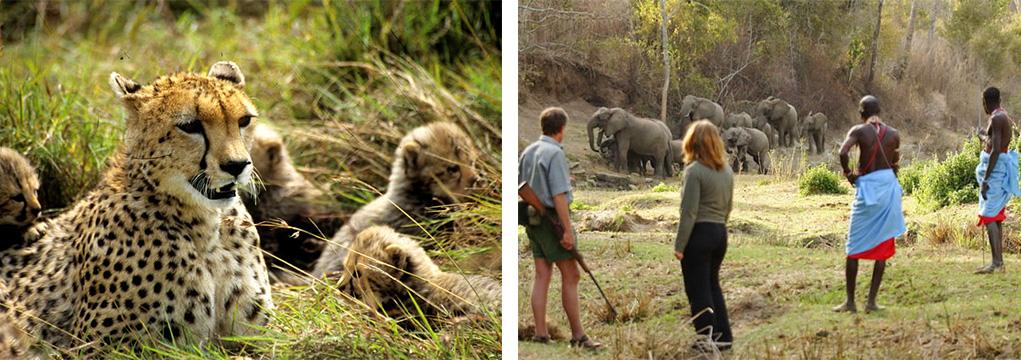 African Safari Family Adventure 2021 26