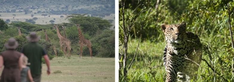 African Safari Family Adventure 2021 18