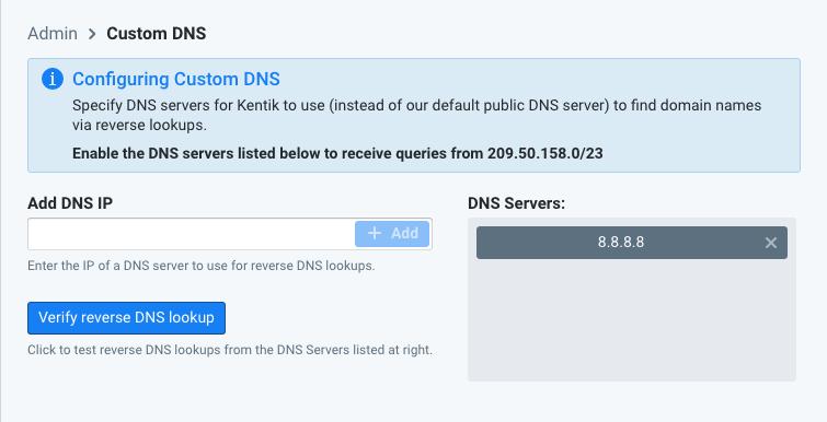 Configuring custom DNS