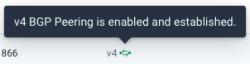 bgp-enable-established.png