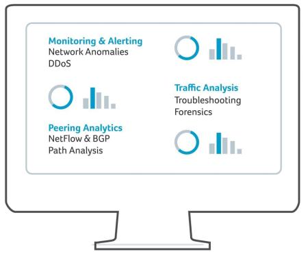 NetFlow Analysis Illustration: Monitoring and alerting, Peering Analytics, and Traffic Analysis