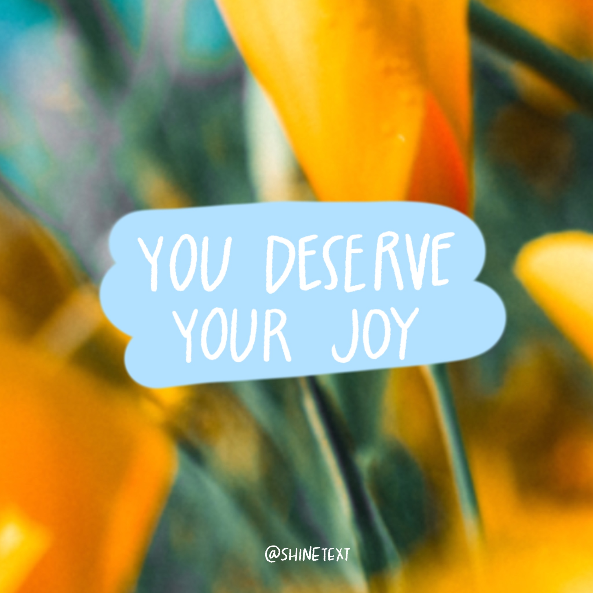 You Deserve Your Joy