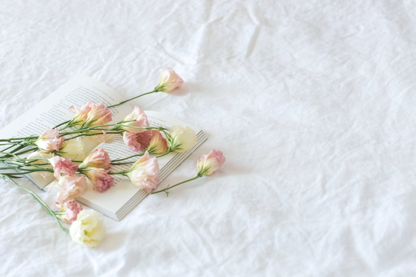 flowers on sheets