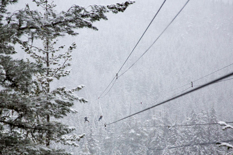 zipline snow