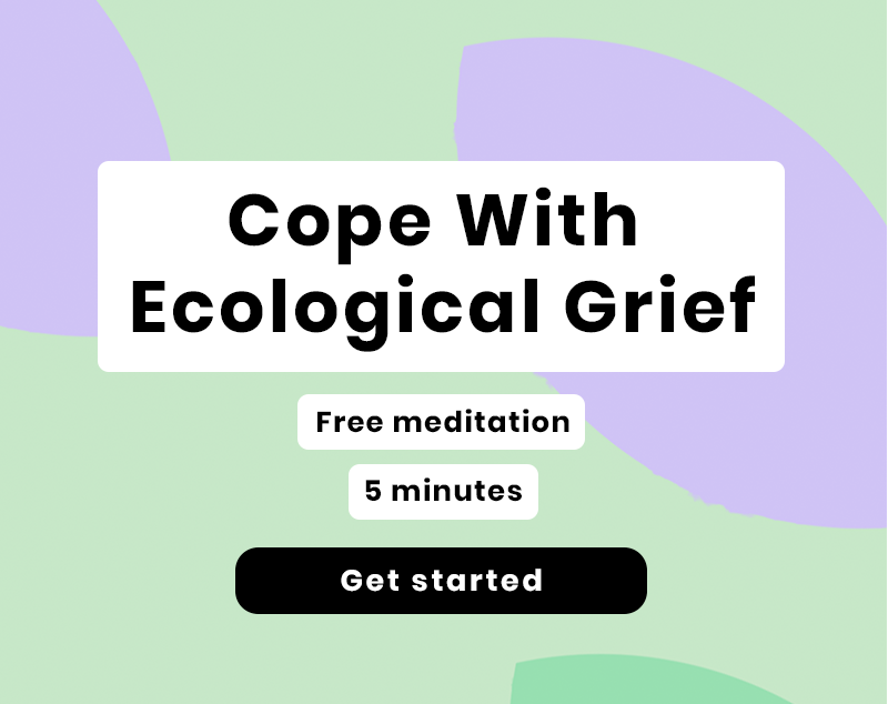 eco-grief-meditation