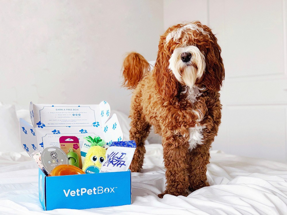 vetpet-box
