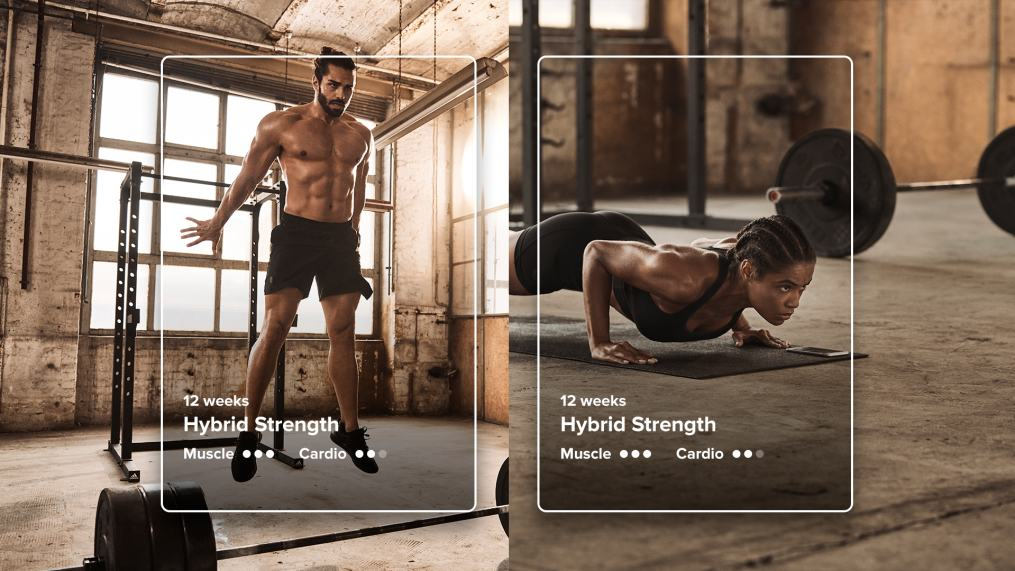 Gym and bodyweight strength building Training Journeys