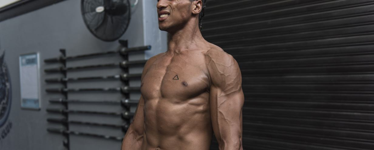 Complex but crucial: How your muscles move