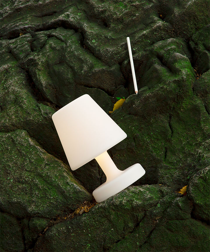 Moss and lamp