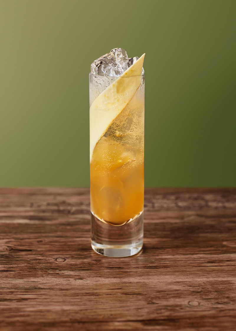 Pear Parsnip Soda
