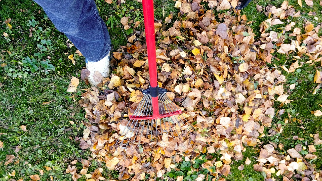 Similar to an Initial Cleanup, a Fall Cleanup prepares your yard for the winter. Garden beds are prepped for the weather, shrubs are pruned and managed and leaves are removed, as needed.