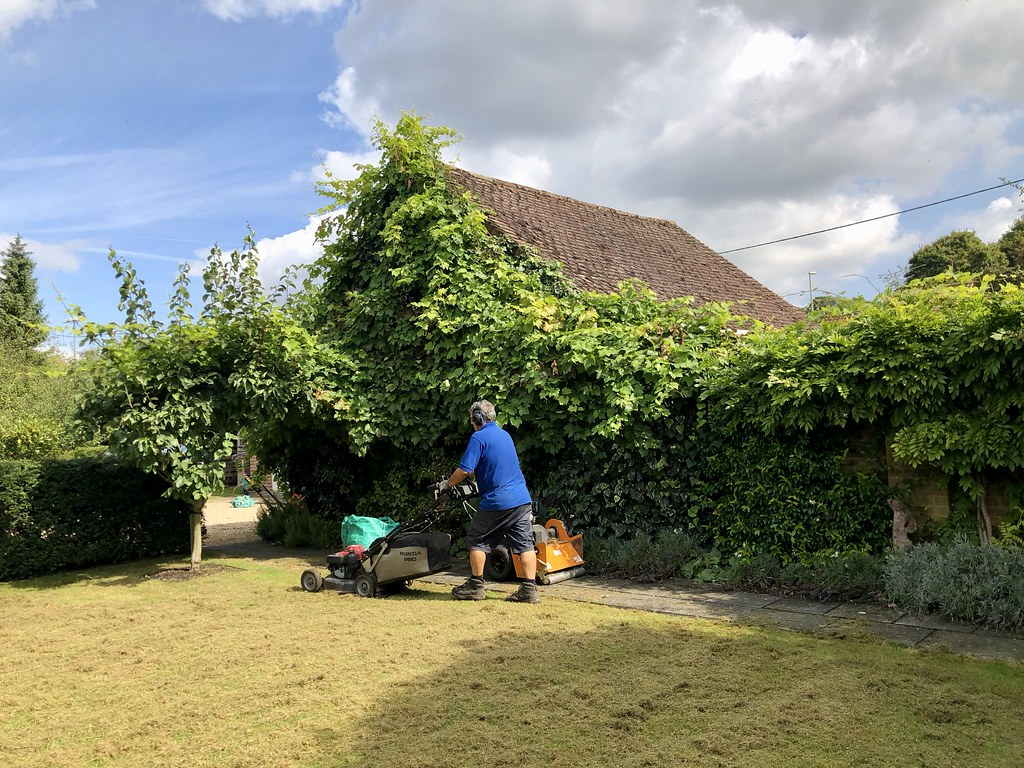 Aeration helps promote lawn growth and alleviate soil compaction. Eden's landscape professionals will perforate the soil in your yard with small holes to allow air, water and nutrients to penetrate the grass roots.