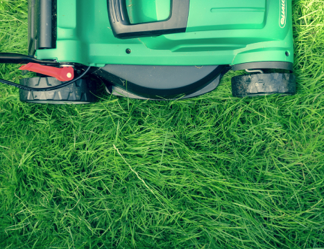 Image of a lawn mower cutting grass.