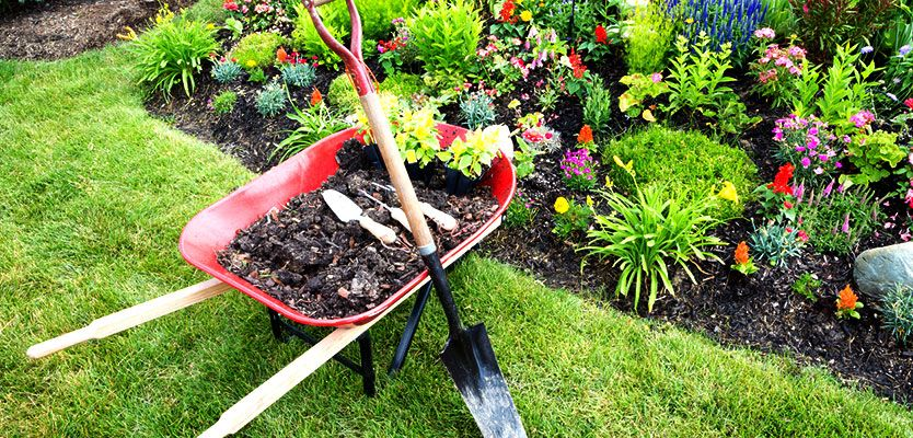 Wheel barrow with soil and mulch