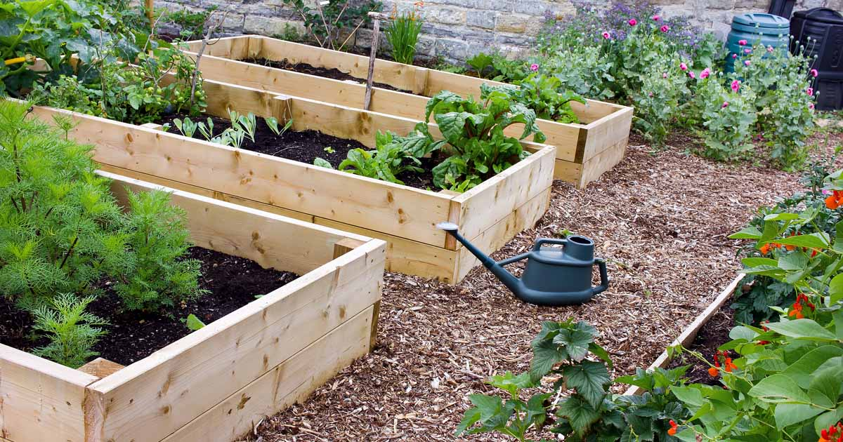 Offered as a singular yard work service, in addition to being included in an Initial or Fall Cleanup service, Eden protects the beauty of your garden beds by offering weed control, soil cultivation, edging, raking and flower care services. ![Garden Beds]